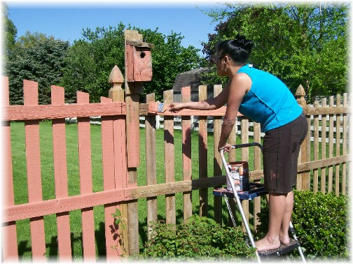 Ester painting fence 5/9/11