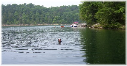 Swimming in Raystown Lake