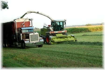 Alfalfa Harvest (photo by Doris High)