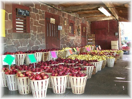 The Village Farm Market