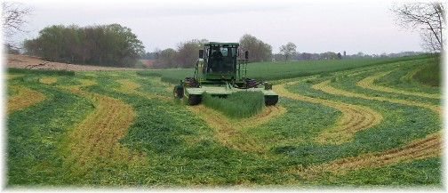 First harvest 2011