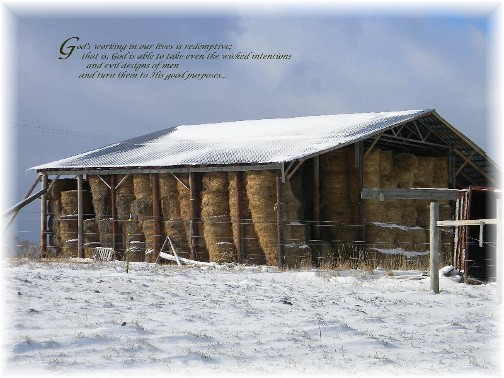Hay barn in snow