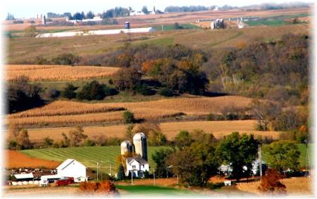 Iowa Harvest scene