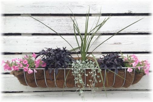 Amish flower arrangement on barn 6/3/15