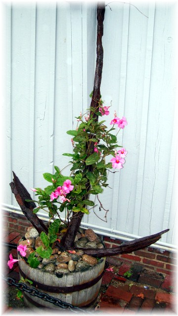Anchor flower planter, Rockport, Massachusetts