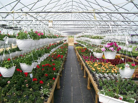 Creekside Greenhouse, Lancaster County PA