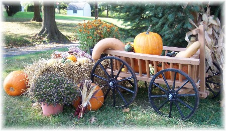 http://www.dailyencouragement.net/images/flowers/decorated_cart.jpg