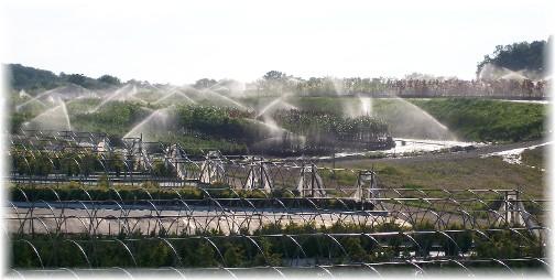 Eaton Farm irrigation 6/30/11