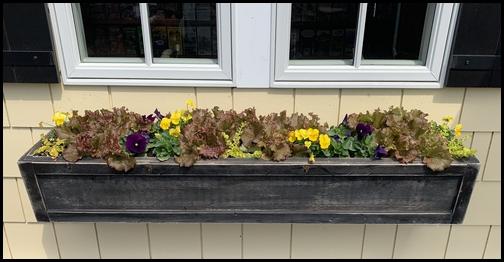 Kitchen Kettle Village flowerbox 4/18/19
