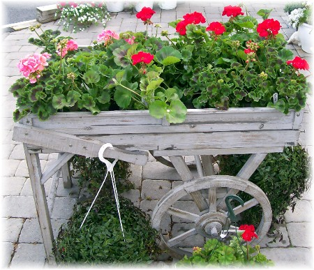 Flower cart at Kitchen Kettle Village, Lancaster County PA 4/22/10
