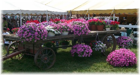 Flower cart in Perry County PA