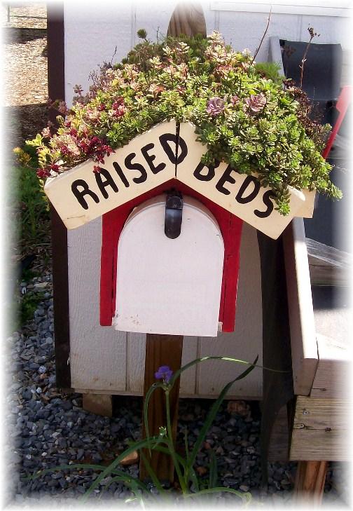 Mailbox with sedum flower roof