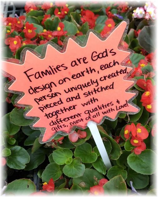 Greenhouse wisdom, Farmstead Flowers, Lancaster County, PA 5/28/18