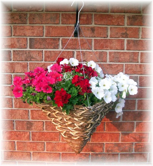 Hanging basket in front of our home