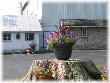 Hess barn & flowers