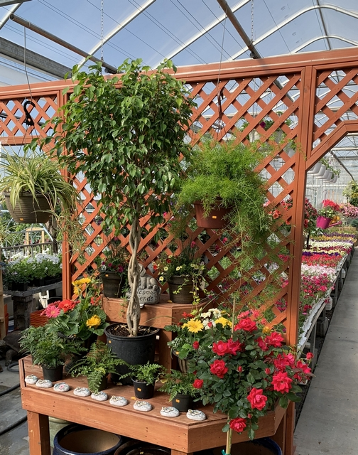 Display at Hillside Acres Greenhouse 5/24/19