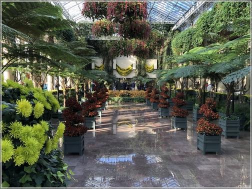 Longwood Gardens Conservatory 11/11/18