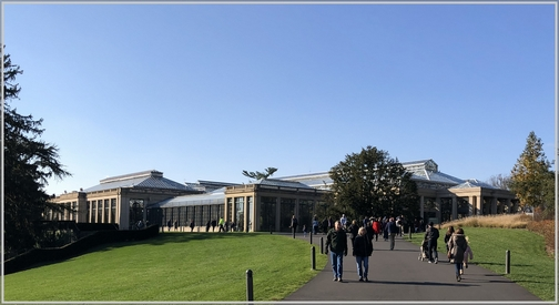 Longwood Gardens Conservatory 11/11/18 (Click to enlarge)