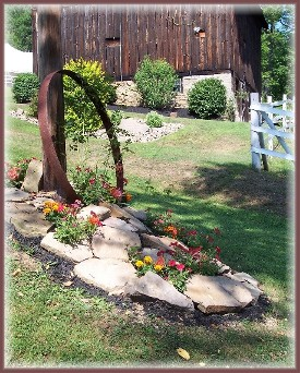 Flowers at Neizmik's farm