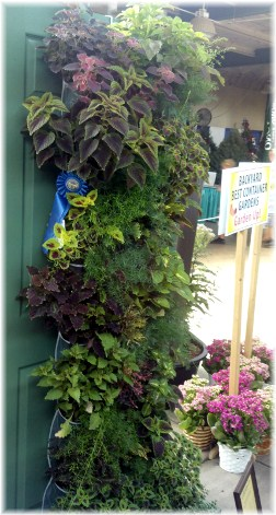 Ohio State Fair hanging flowers 8/12