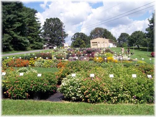 Penn State trial garden