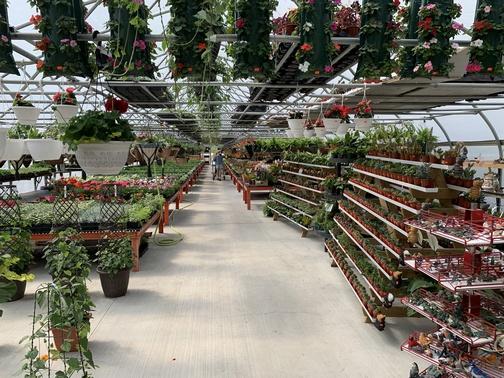 SpookyNook Greenhouse