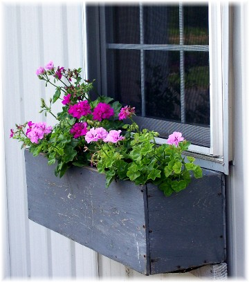 Window box on barn