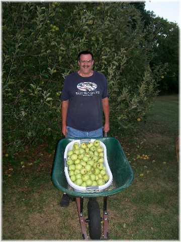 2010 apple harvest, Lancaster County, PA