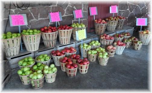 Apples at Village Farm Market
