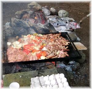 Campfire griddle