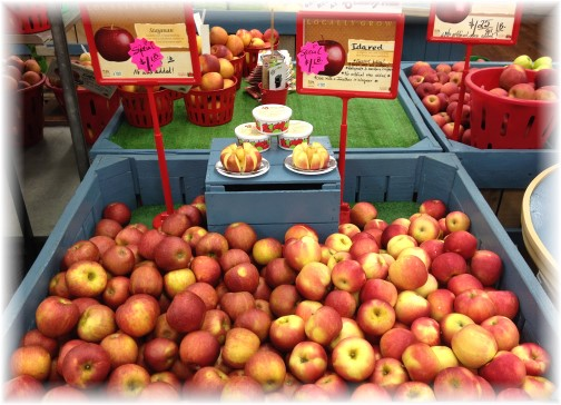 Cherry Hill orchards apples 7/3/14