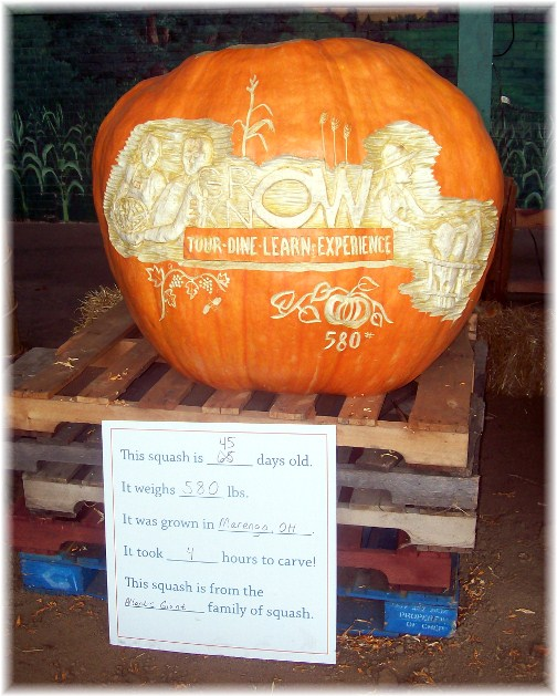 Ohio State Fair giant squash 8/12
