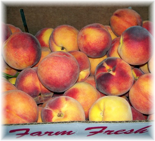 Box of Lancaster County PA peaches