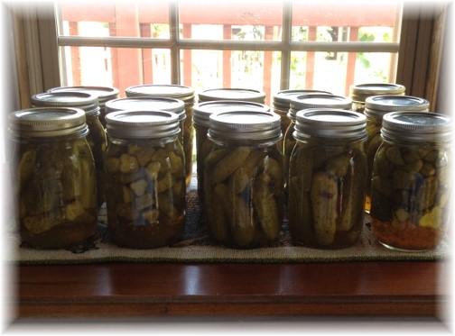 Pickles 7/29/15