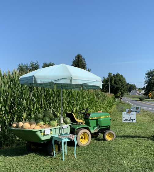 Tractor and melon cart 8/20/19