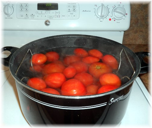 2013 salsa canning