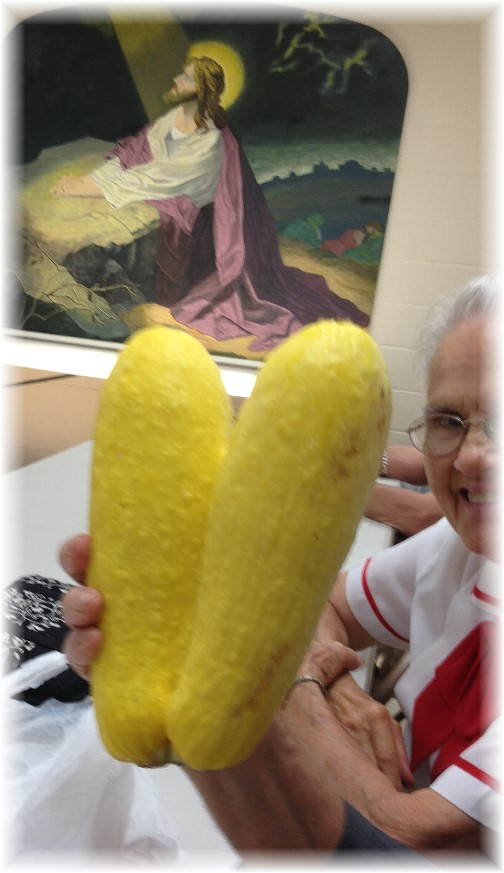 Twin summer squash from Jesse 8/10/14