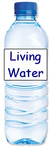 """Living Water"" bottle"