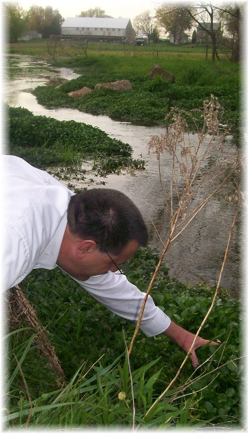 Collecting watercress 4/15/12