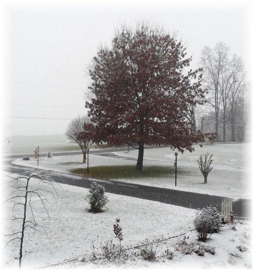 First seasonal snow 11/27/12
