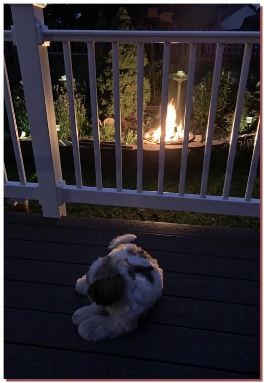 Backyard fire 5/26/19