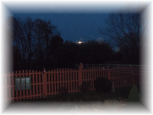 Backyard moonrise 11/16/13