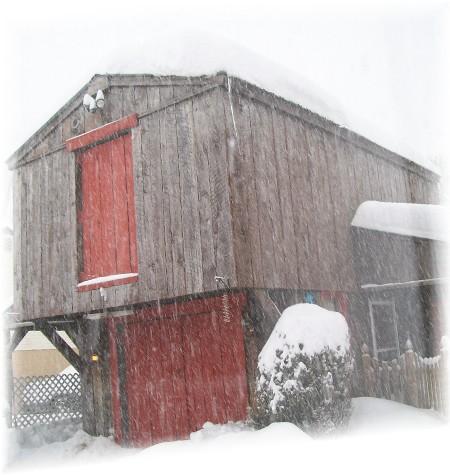 Barn in snow 2/10/10