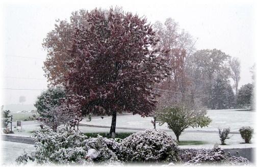 First seasonal snow 10/29/11