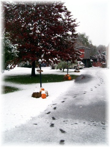 First seasonal snow driveway view 10/29/11