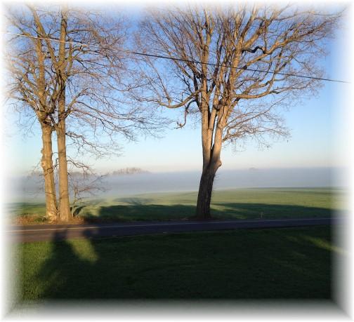 Foggy morning 4/18/15
