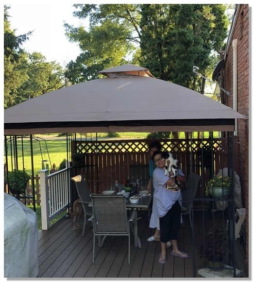 Gazebo on our deck 7/9/18