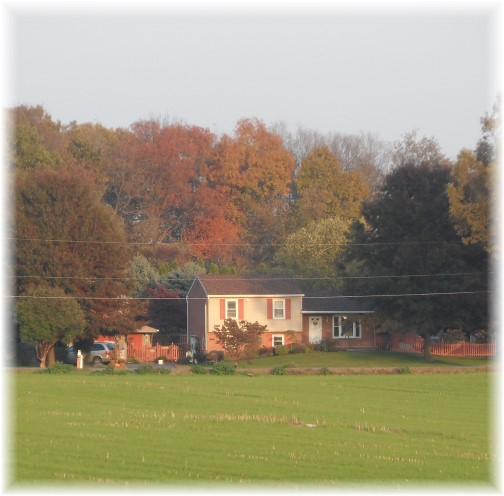 View of our home across field 10/29/13