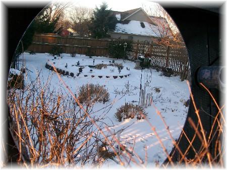 Photo of backyard through mirror