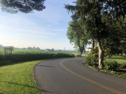 Morning walk 7/10/19